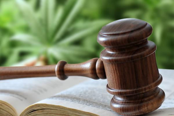marijuana laws,drug attorney Arizona,drug crime attorney,marijuana lawyer,Arizona drug lawyer