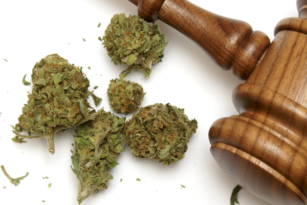 marijuana laws,drug bust,marijuana arrests,marijuana busts,marijuana charge,pot bust Arizona