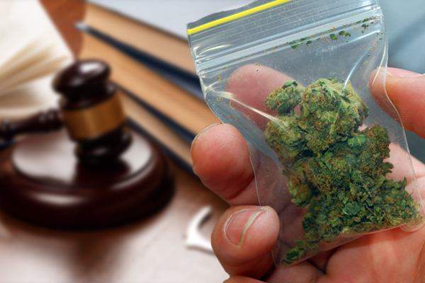 pot possession,pot bust,pot Arizona