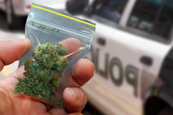 We Fight Marijuana Busts on I-40! Get Your FREE Consultation